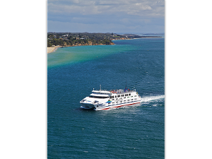 Queenscliff Ferry - Prepaid Postcard product photo