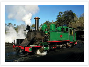 Puffing Billy postcard product photo
