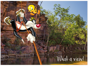 Sylvester and Tweety rock climbing Umbrawarra Gorge, NT product photo