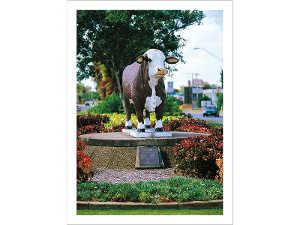 Beef City, Rockhampton postcard product photo
