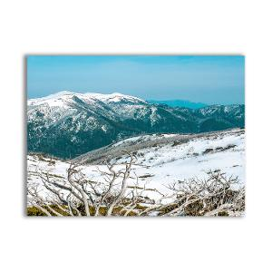 View from Falls Creek, Alpine National Park postcard product photo