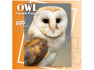 Owl 500 piece jigsaw puzzle product photo