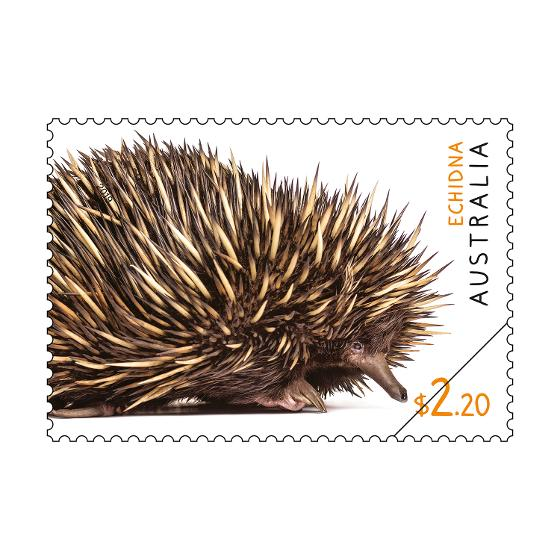 Set of Australian Fauna II stamps product photo Internal 4 DETAILS