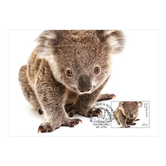 Set of Australian Fauna II maxicards product photo Internal 2 DETAILS