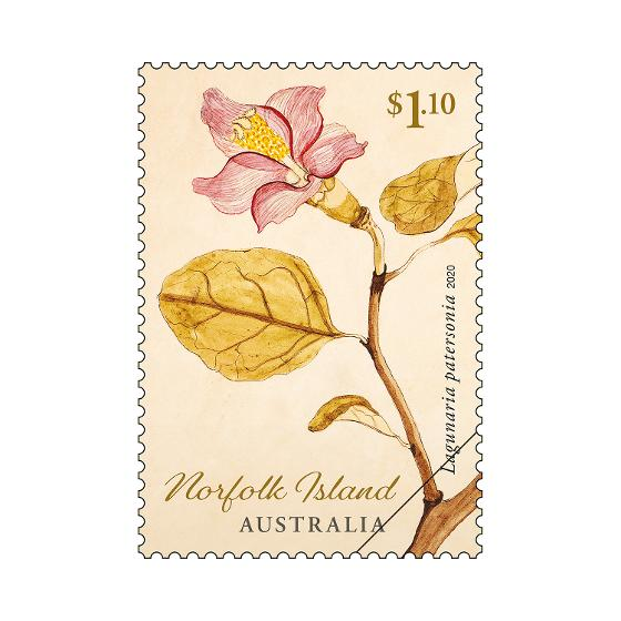 Set of Norfolk Island Early Botanical Art stamps product photo Internal 2 DETAILS