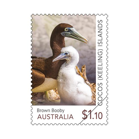 Set of Cocos (Keeling) Islands: Booby Birds gummed stamps product photo Internal 2 DETAILS