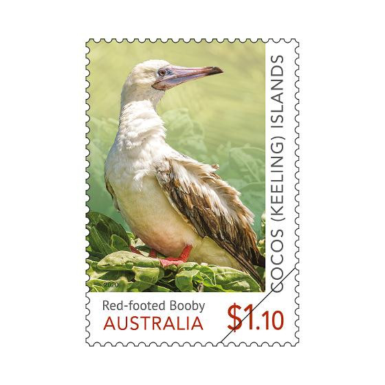 Set of Cocos (Keeling) Islands: Booby Birds gummed stamps product photo Internal 3 DETAILS