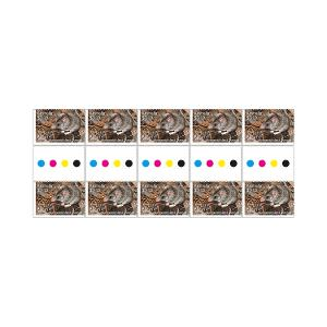 Gutter strip of 10 x $1.10 Kangaroo Island Dunnart stamps product photo
