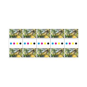 Gutter strip of 10 x $1.10 Regent Honeyeater stamps product photo
