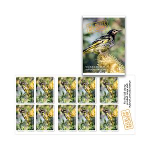 Booklet of 10 x $1.10 Regent Honeyeater stamps product photo