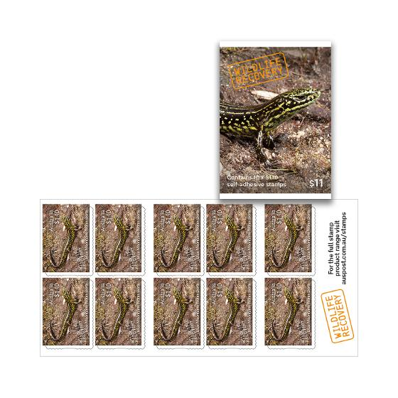 Booklet of 10 x $1.10 Blue Mountains Water Skink stamps product photo Internal 2 DETAILS