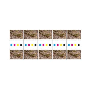 Gutter strip of 10 x $1.10 Blue Mountains Water Skink stamps product photo