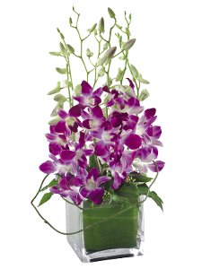 Flower Bouquet - Violetta product photo