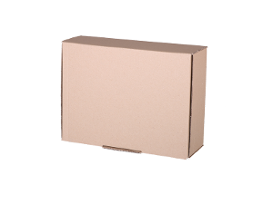 Plain Mailing Box (BXP2) - 310 x 225 x 102mm - 20 pack product photo