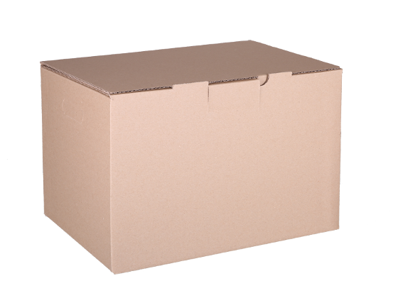 Plain Mailing Box (BXP5) - 405 x 300 x 255mm - 10 pack product photo Internal 1 DETAILS